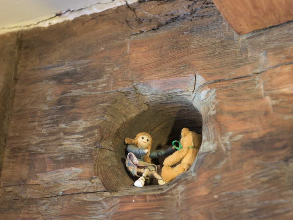 See if you can spot this pair in their secret mousehole!